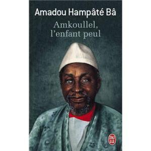 citations tirées de Amkoullel l'enfant peul
