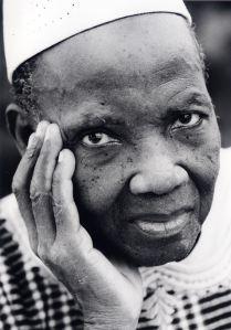 ces historiens qui ont décidé de raconter l'histoire de l'Afrique